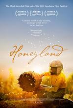 Plakat filmu Kraina miodu